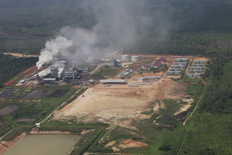 A paper and pulp factory processing and producing paper from the former rainforest. The products from this plant will be exported world wide.