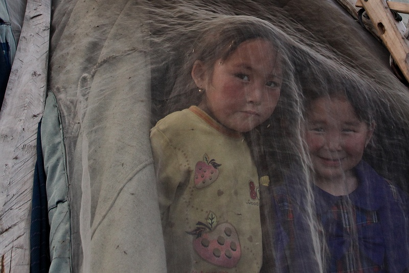 Two Nenets girls peer at strange visitors through a mosquito net covering their chum's entrance. Whether the Nenets can retain the nomadic traditions of their ancestors will be determined by the exploitation of resources and climate change.  Both change the landscape and prevent their ability to migrate freely. Their nomadic way of life with reindeer has a history longer than a millennia and the Nenets are the only remaining Nomadic herders left in the world. During recent years their reindeers pasture area has decreased and the landscape has become unpredictable and dangerous as the [tag permafrost permafrost] melts.