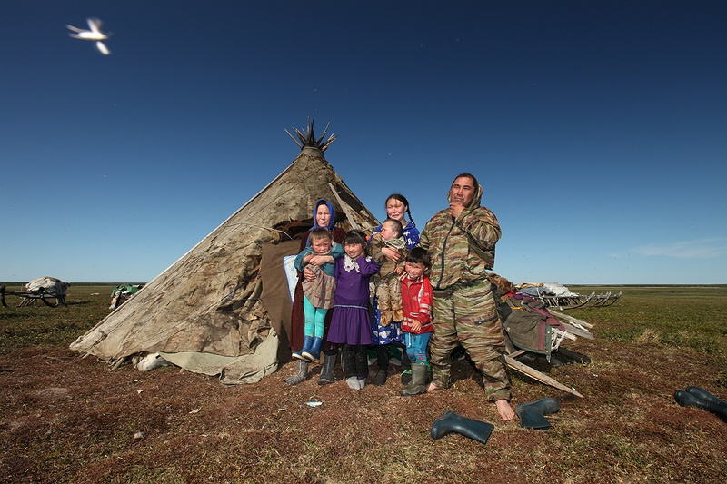 The hoodi family pictured with close up mosquito.  One of the hardest things about photographing in Yamal in the summer was the amount of mosquitos. They must be the single most thing that make the -50C winters tolerable, no swarms of insects.