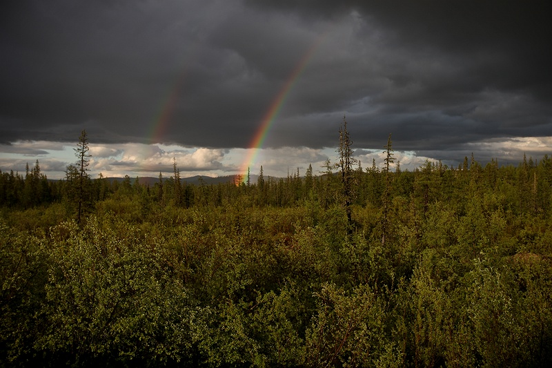 Two rainbows over the taiga outside Iengra. 65 percent of Russia's landmass is constantly frozen, but as the temperatures in the ground increase the permafrost is beginning to thaw. The frozen grounds contain large amounts of carbon locked in the ice and as it melts these gases are being released into the atmosphere.
