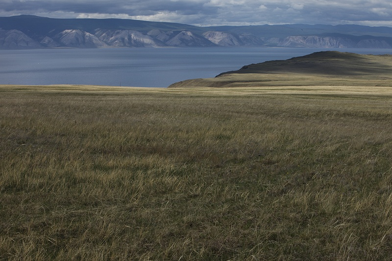Olkhon island is a 70 kilometre island that lies almost in the middle of 636 km long and 80 km wide lake Baikal. This is the view North West over Olkhon's grassy planes with the Baikal mountains in the background. The Baikal stone hollow has become home to one of the richest and most unusual fresh water fauna in the world as it has been isolated from the outer world.