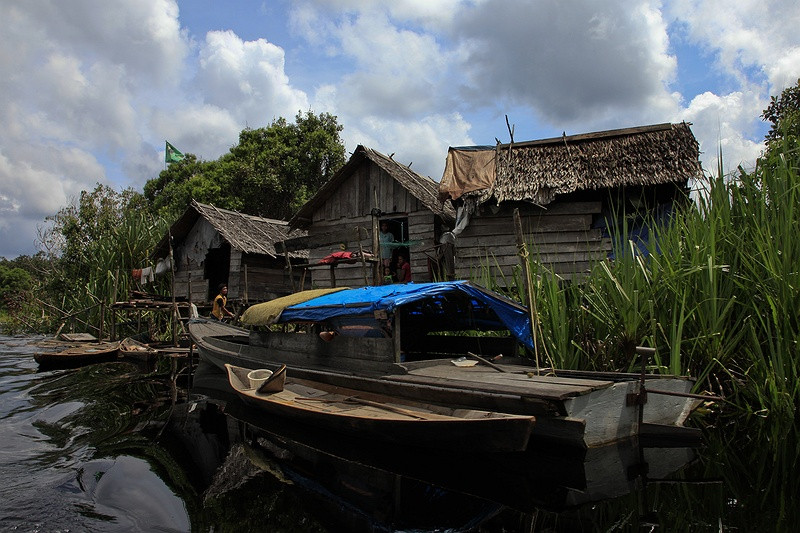 A fishing community living in the peatland rainforest along the Serkap river in the Kampar peninsula. These people are affected by  deforestation as large quantities of nutrients drain from deforested land acidifying rivers, lakes and water ways. Since 1998 their catch has dropped by 70 percent reflecting the scale of the surrounding forest destruction.